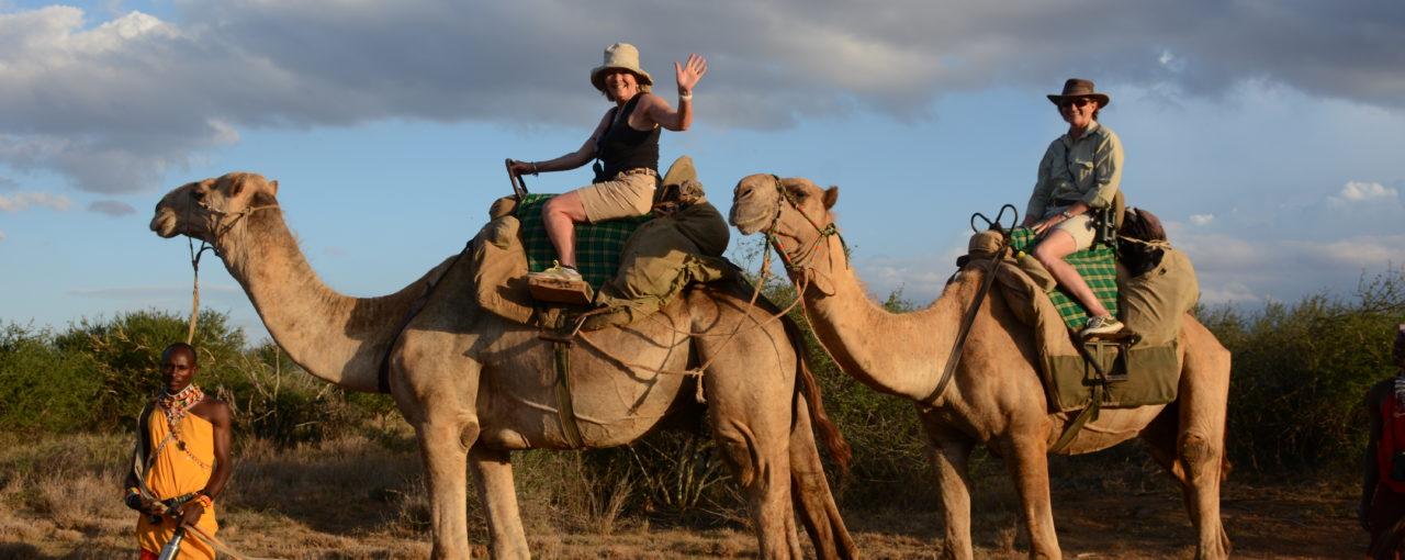Safari & Activity Ideas In East Africa